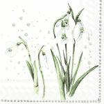 spring greetings