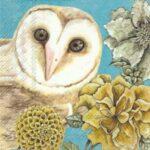 owl tale